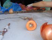 Крымчанин пытался пронести арестованному в СИЗО психотропную морковку и луковицу (фото)