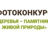 Победитель фотоконкурса «Деревья – памятники живой природы» получит 100 тысяч рублей