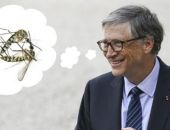 Билл Гейтс профинансирует создание комаров-убийц для борьбы с малярией