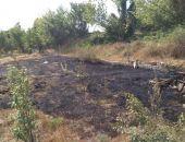 В Приморском и Береговом вчера горела сухая трава