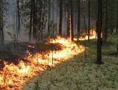 В Крыму из-за угрозы пожаров снова продлили запрет на посещение лесов