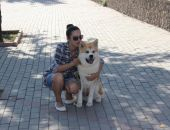 Выставка собак собрала более полусотни участников
