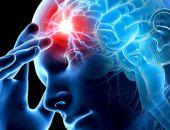 Учёные выяснили, что работа мозга зависит от времени года