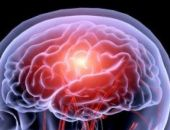 Учёные рассказали, как мозг забывает ненужные воспоминания