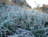 В Крыму ночью ожидаются заморозки
