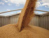 Крым закупит 82 тыс. тонн пшеницы из госрезерва