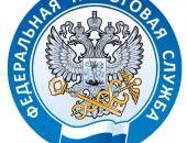 В Крыму вырос уровень налоговой дисциплины в сфере предпринимательства