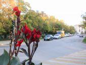 Феодосия, первый день ноября