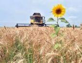 В Крыму снизилось производство сельхозпродукции