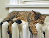 Тепло появляется в домах феодосийцев