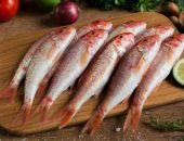 В Крыму в этом году рыбаки выловили более 500 тонн барабули, – Росрыболовство