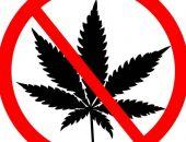 В Феодосии в очередной раз задержали сбытчика наркотиков