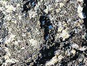 Найденный след стопы Андрея Первозванного в Крыму - 38 размера