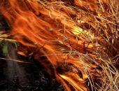 Опять горела сухая трава в Феодосии