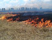 В Коктебеле горела сухая трава