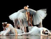 В Симферополе открыли первую в Крыму студию балета для взрослых