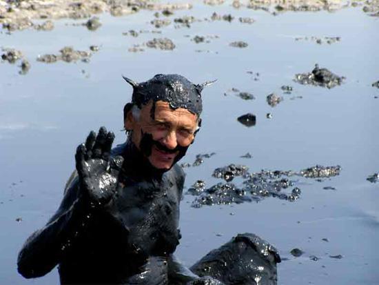 Экологи рекомендуют экокожу новые фото
