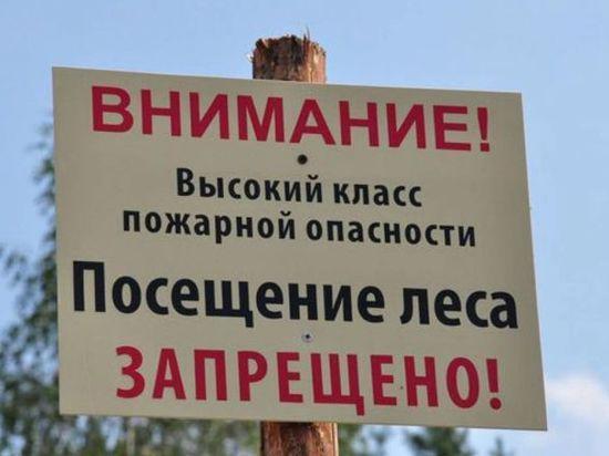 3f073a5fc522 Продлён запрет на посещение крымских лесов - информационный сайт ...