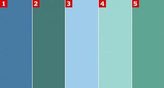 Как вы видите цвета тест