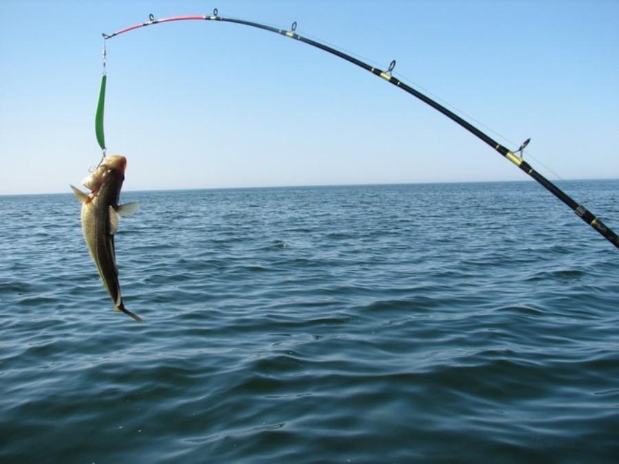 Рыбалка на Чёрном море с берега: видео ловли спиннингом