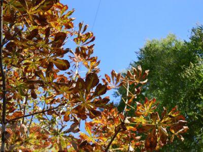 Феодосия. Краски октября